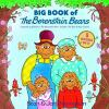 Go to record Big book of the Berenstain Bears